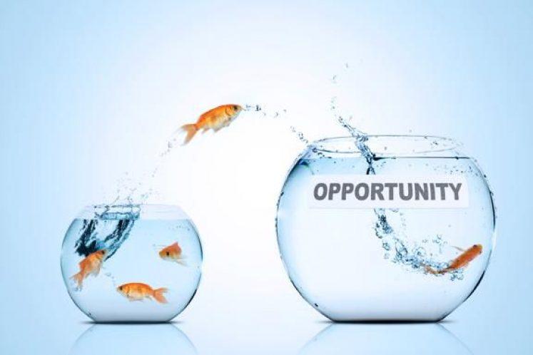 l_opportunisme-ou-opportunite